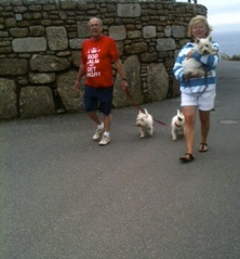 I saw 3 scotties at Land's End. That one is all tuckered out.