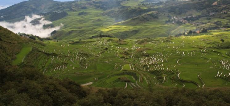 Duoyishu Panorama, Yuanyang © Jo James