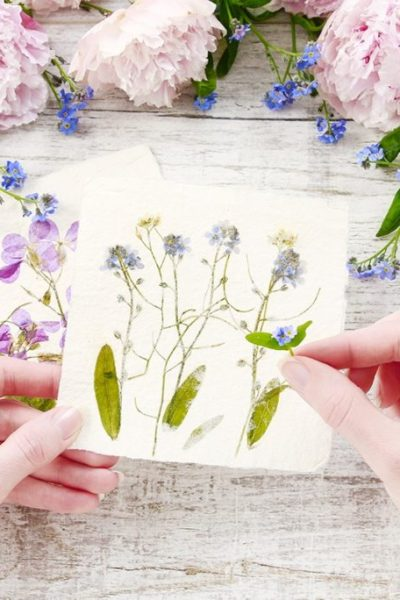 How to Dry Flowers – Everything You Need to Know