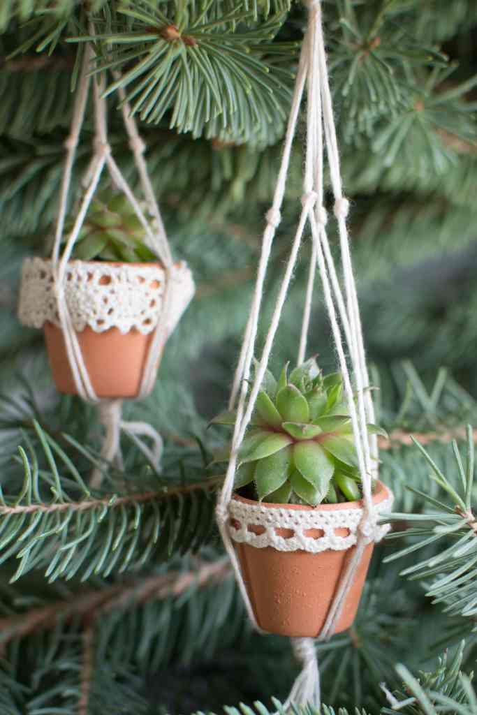 mini succulent pots in tiny macrame plant hangers - hanging in a Christmas tree