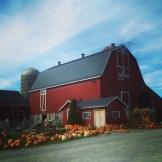 The Farm Stall, Picton