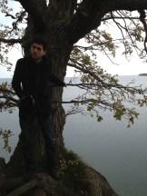 DF on the Precipice
