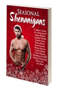 3D copy of Seasonal Shenanigans book cover