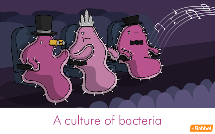 """A culture of bacteria"" - Illustration von James Chapman"