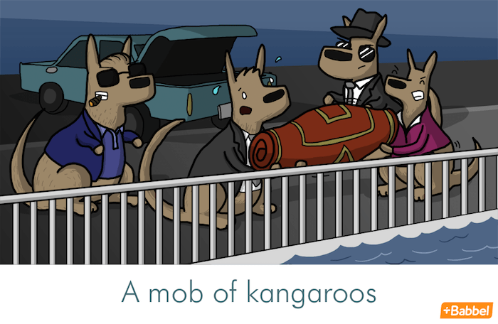 """A mob of kangaroos"" - Illustration von James Chapman"