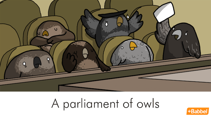 """A parliament of owls"" - Illustration von James Chapman"