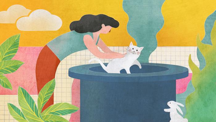 Brasilianische Redewendung: Comprar gato por lebre
