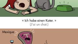Comment se plaindre de sa gueule de bois en 8 langues différentes