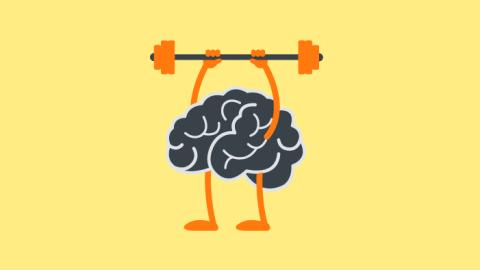 Die Neurowissenschaften und das Lernen