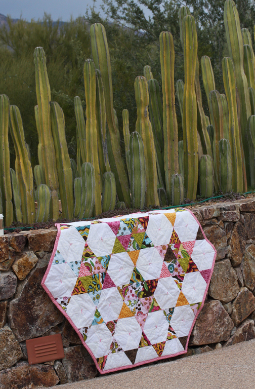 Triangle quilt with cactus gate