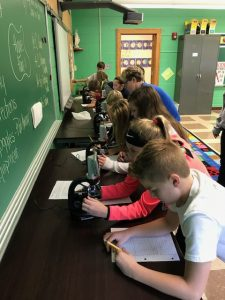 "5th graders make ""ex-cell-ent"" use of school science lab"
