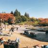 昼の世田谷公園は出店もあり、家族で過ごすのに適してる