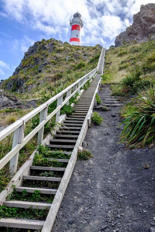le phare du Cap Palliser