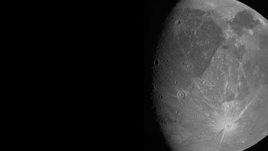 NASA's Juno spacecraft has delivered a close-up of Ganymede, the first in years