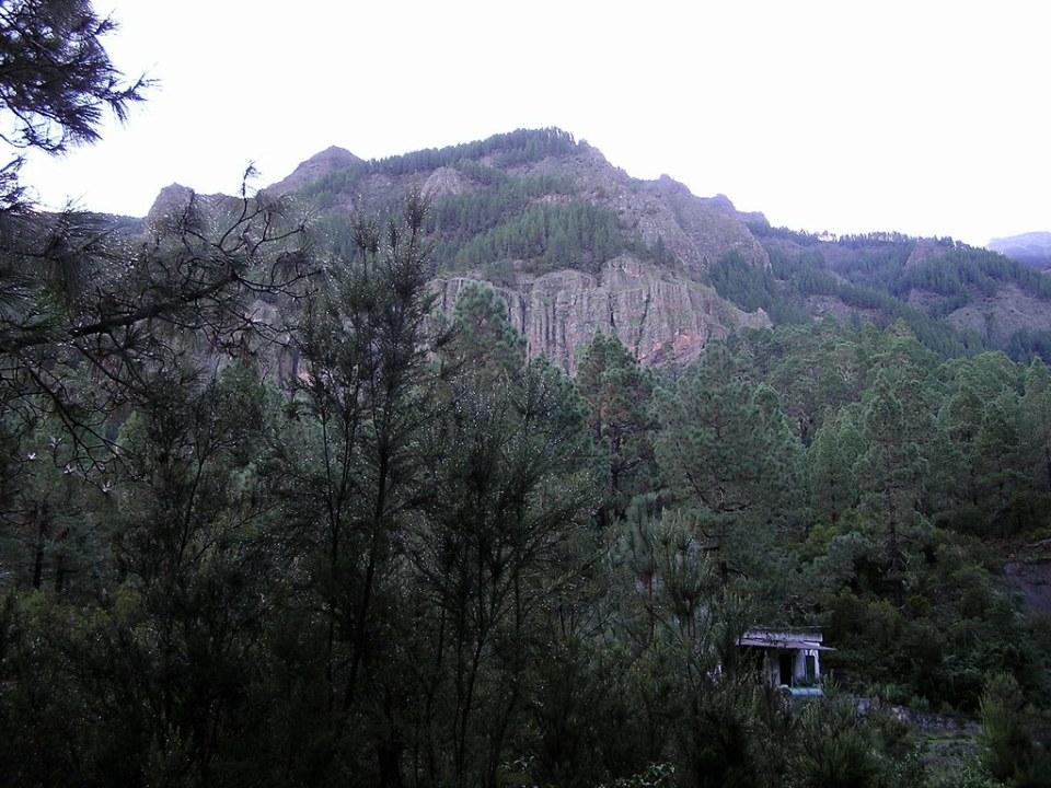 Ruta de Los Organos de la Orotava isla de Tenerife 100