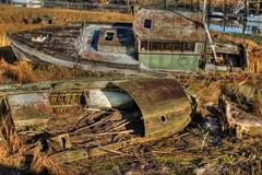 Samish River Shipwrecks 3 HDR