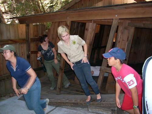 Santa Cruz Mystery Spot cabin