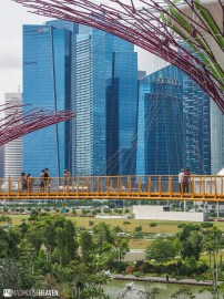 Singapore - 0009