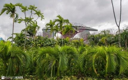 Singapore - 0026
