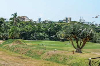 GOLF_CLUB_RIVIERA (68)