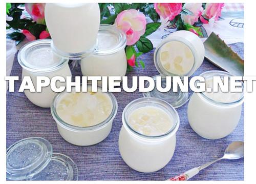 """Cách làm sữa chua """"Yaourt ngon"""" bằng máy ủ sữa chua tại nhà"""