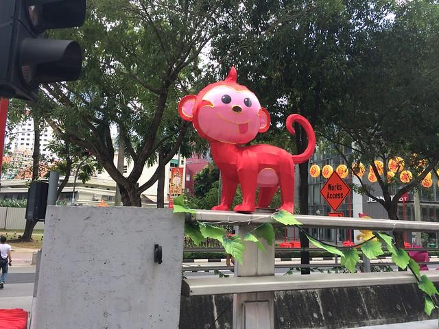 Chinatown monkey