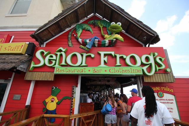 Señor Frogg Nassau