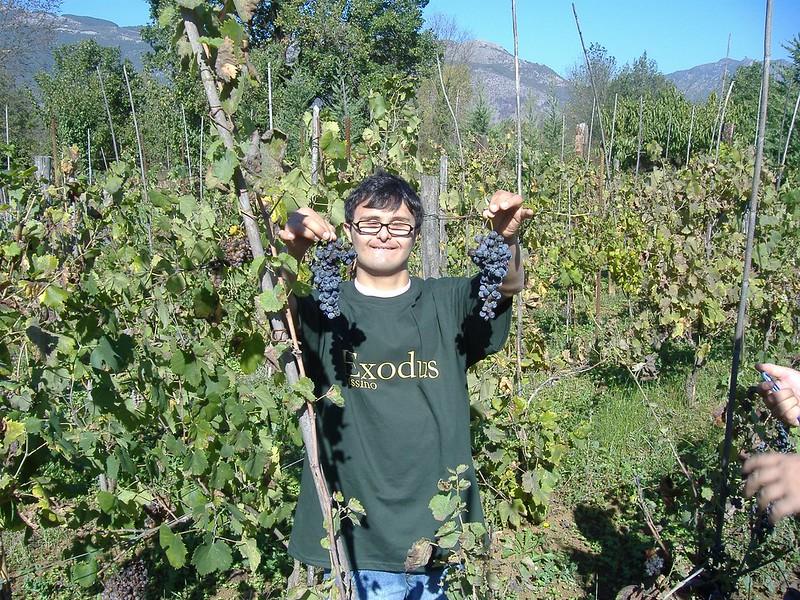 Ragazzi speciali in Fattoria 2007