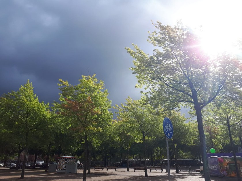 Rotterdam Daily Photo: From the archives: Thunderstorm
