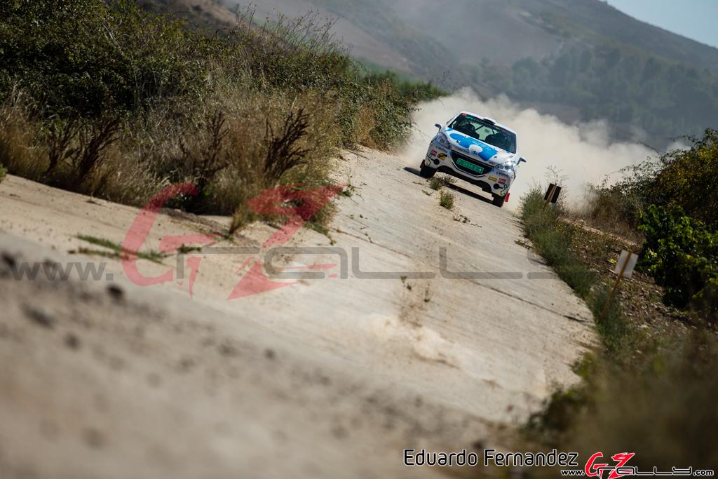 Rally Circuito de Navarra - Eduardo Fernadez