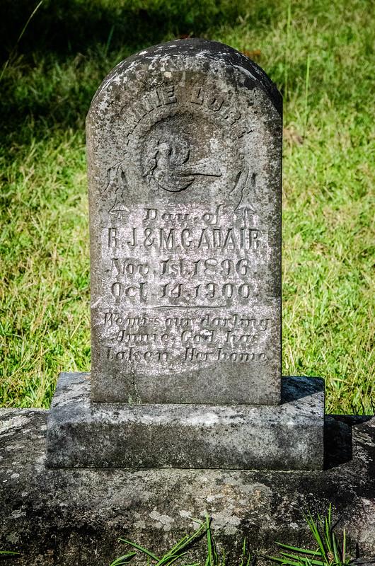 Sardis Methodist Church Cemetery-006