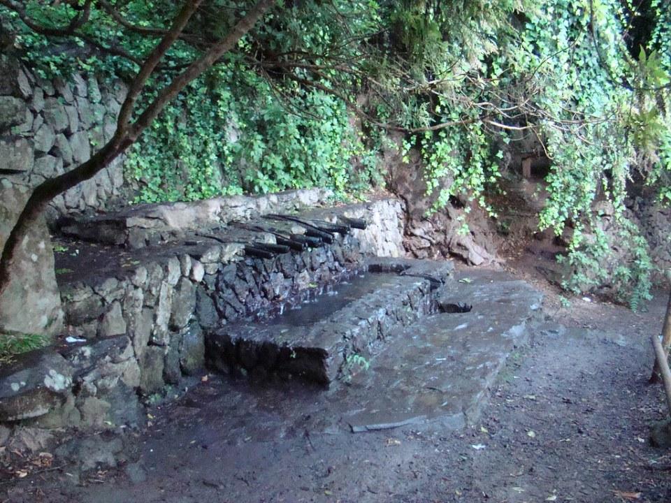 fuente Chorros de Epina isla de La Gomera 02