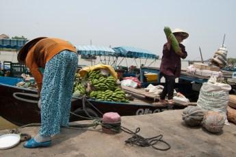 Gemüseanlandung