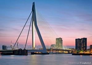 Delicatesse / Erasmusbrug / Rotterdam
