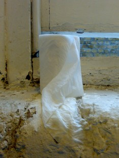damp toilet roll on window sill