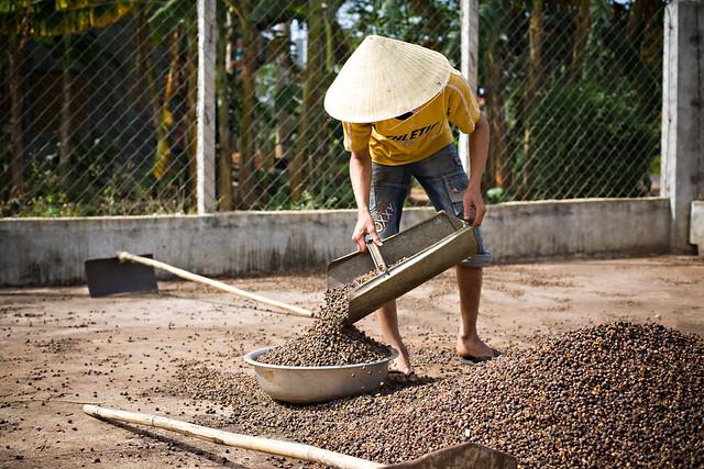 Vietnam_BC_0163