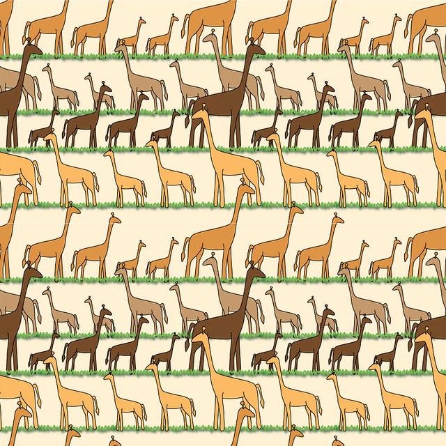giraffes-scenic4