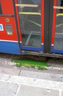 Bus blood