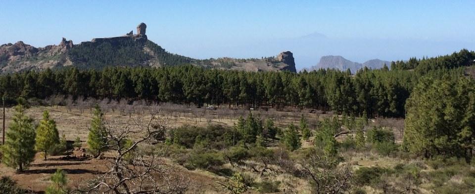 Roque Nublo Roque el Fraile Roque La Rana Tejeda Isla de Gran Canaria 203