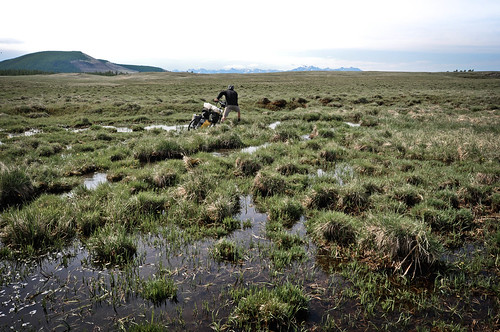 Squelching through the bog