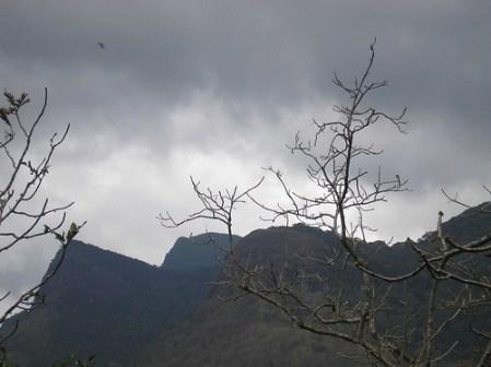 the agasthyakoodam hills