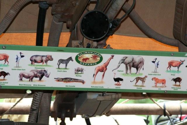 Animal Kingdom Safari Overhead Sign