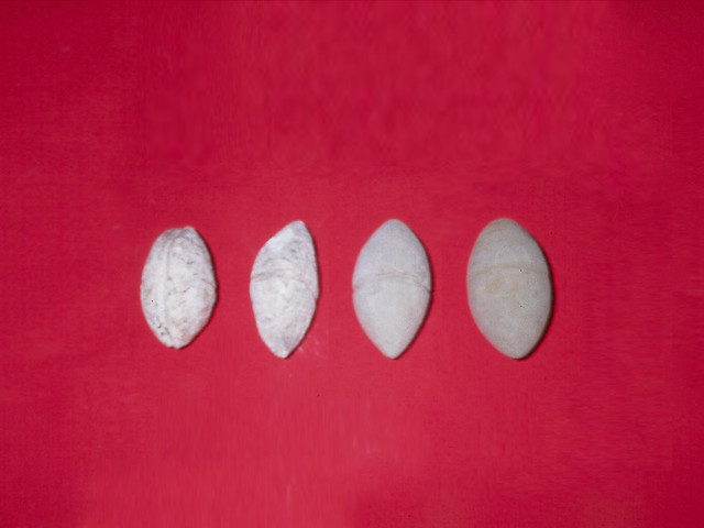 Four Slingstones