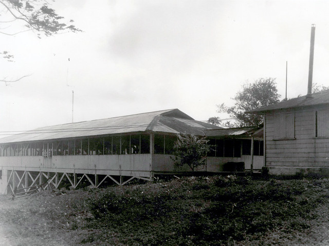 Women's TB Ward, 1935