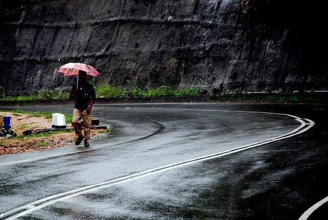 Rain Man !