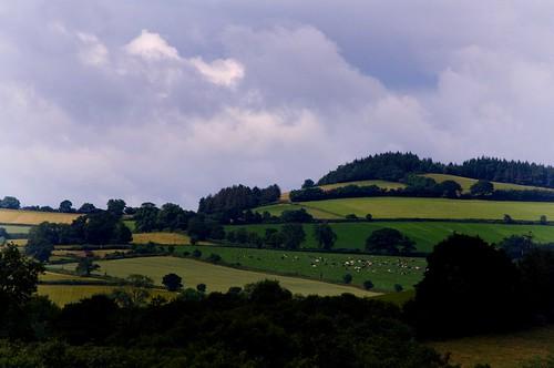 The Beautiful English Countryside DSC_0029