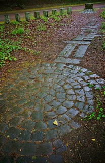 circular stone patio in the woods