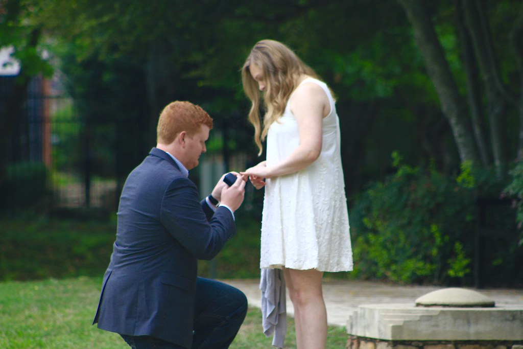 Albright Proposal 4/2/17