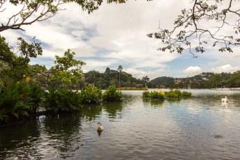 De vijver in Kandy die door middel van dwangarbeid door de toenmalige koning tot stand is gekomen