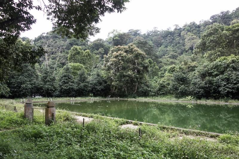 2013-06-05 Abandoned Jungle Resort - DSC04575-FullWM